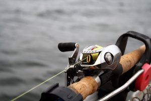 Baitcaster Style of Fishing Reel