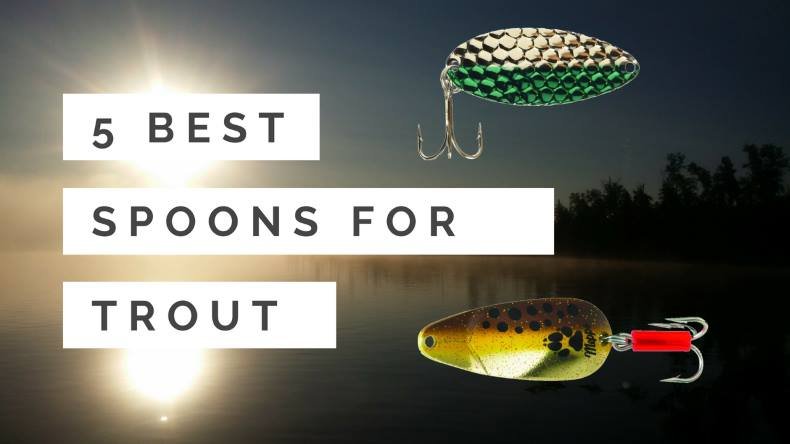 Best Trout Lures of All Time: 5 Best Spoons for Backcountry Trout Fishing