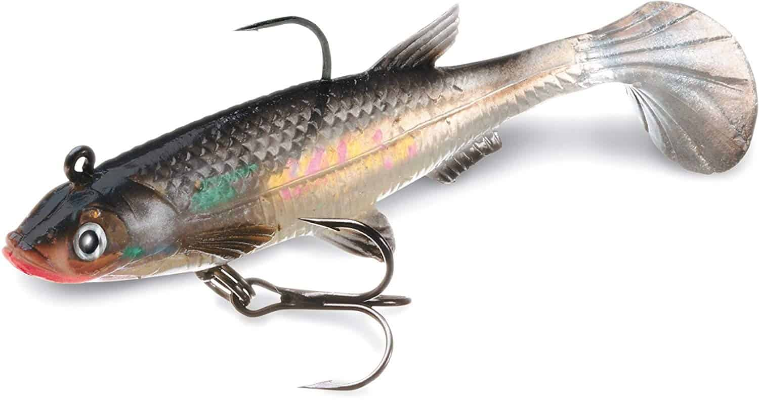 Best Trout Lures of All Time: 5 Best Soft Plastics for Backcountry Trout Fishing