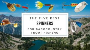 Best Trout Lures of All Time: 5 Best Spinners for Backcountry Trout Fishing