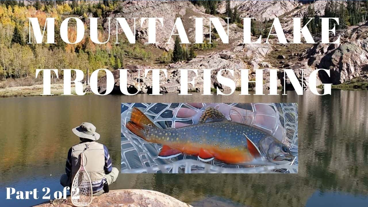 Colorful Spawning Brook Trout Mountain Lake Fishing Video