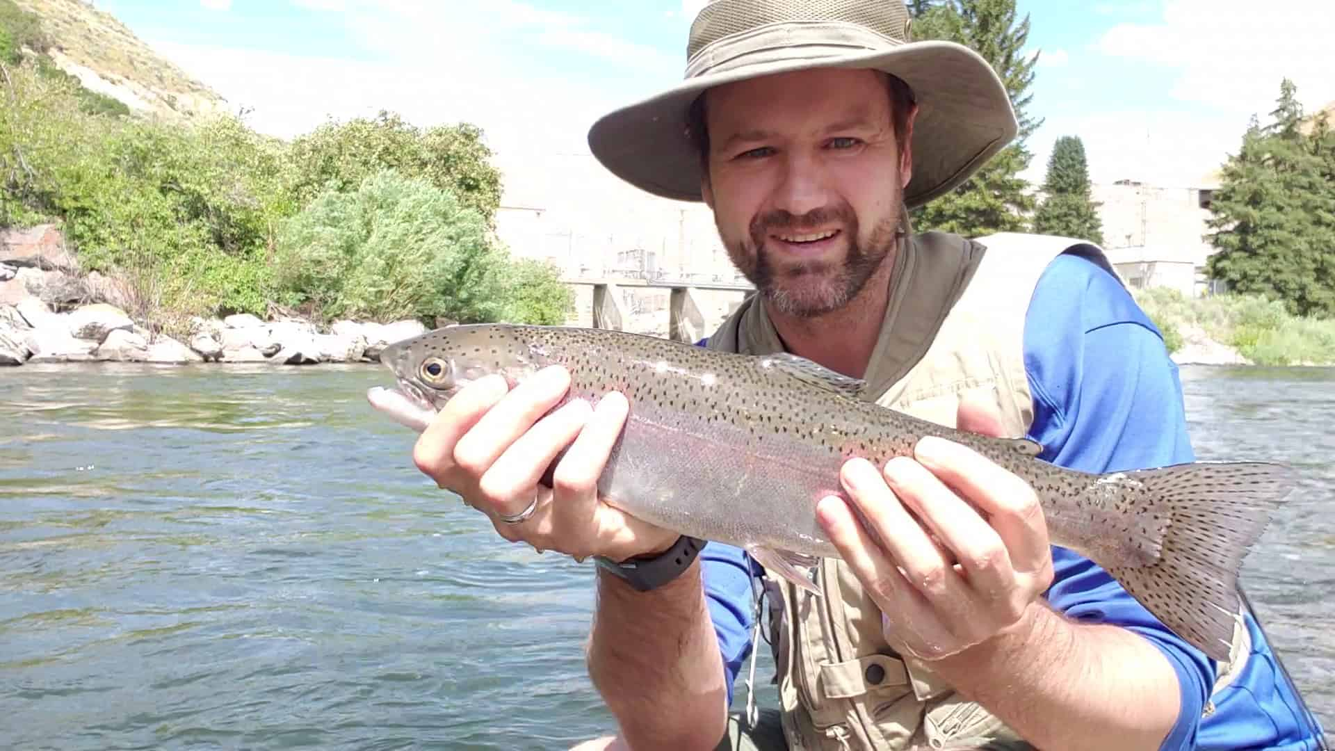 Spin Trout Fishing the Provo River with A Fly Fishing Setup