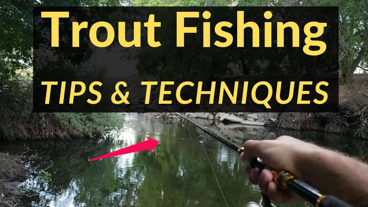 Trout Fishing Tips Tricks & Tactics on the Lower Provo River Utah