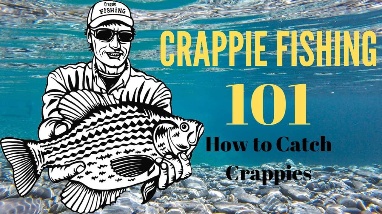 Read more about the article How to Catch Crappies: Crappie Fishing 101