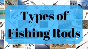 Different Types of Fishing Rods and Their Uses