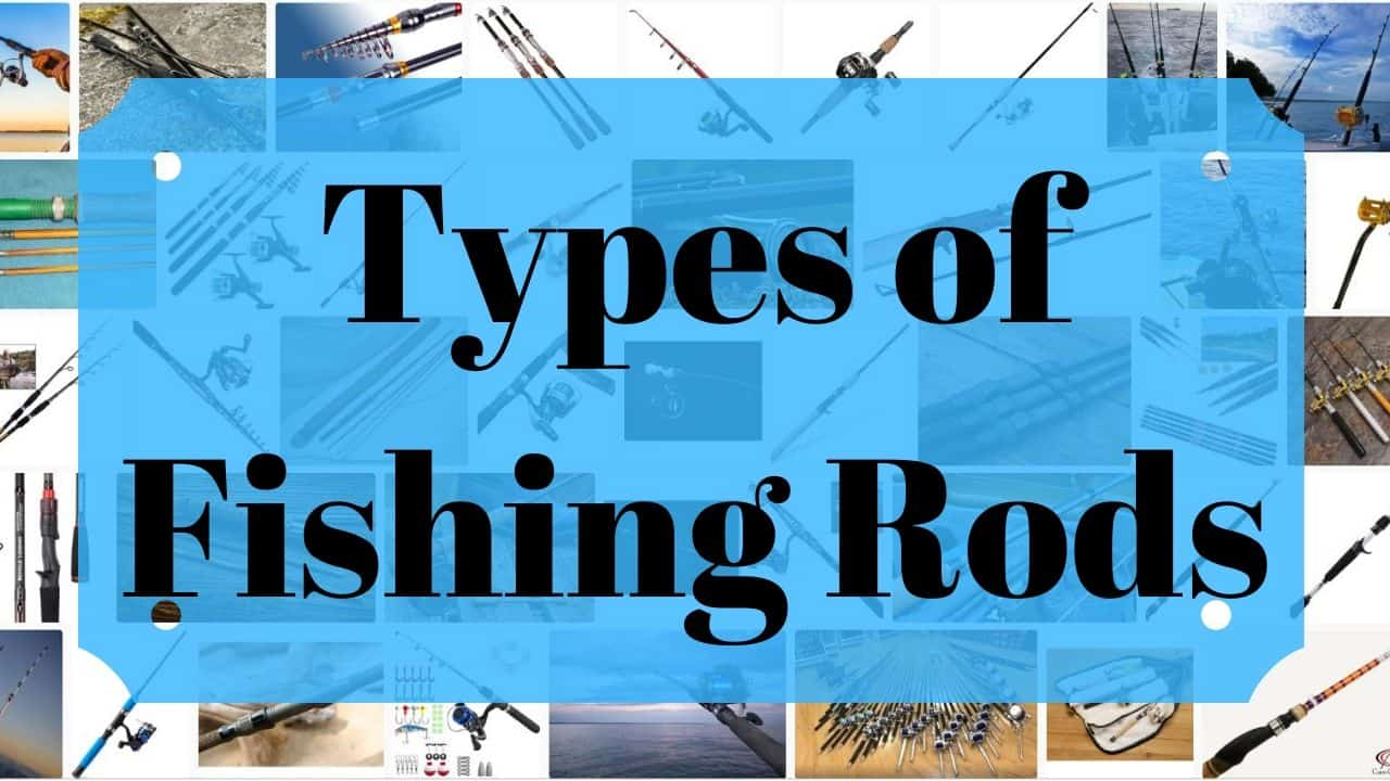 Types of Fishing Rods and Their Uses Cover