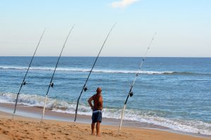 surf fisherman watching his fishing rods for a bite