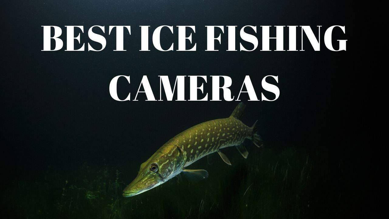 Best Ice Fishing Cameras for 2020