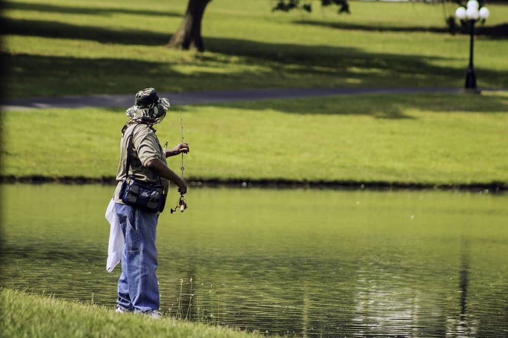 Read more about the article Trout Fishing in a Pond: Fishing Tips And Techniques